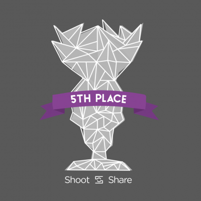 5th place shoot and share
